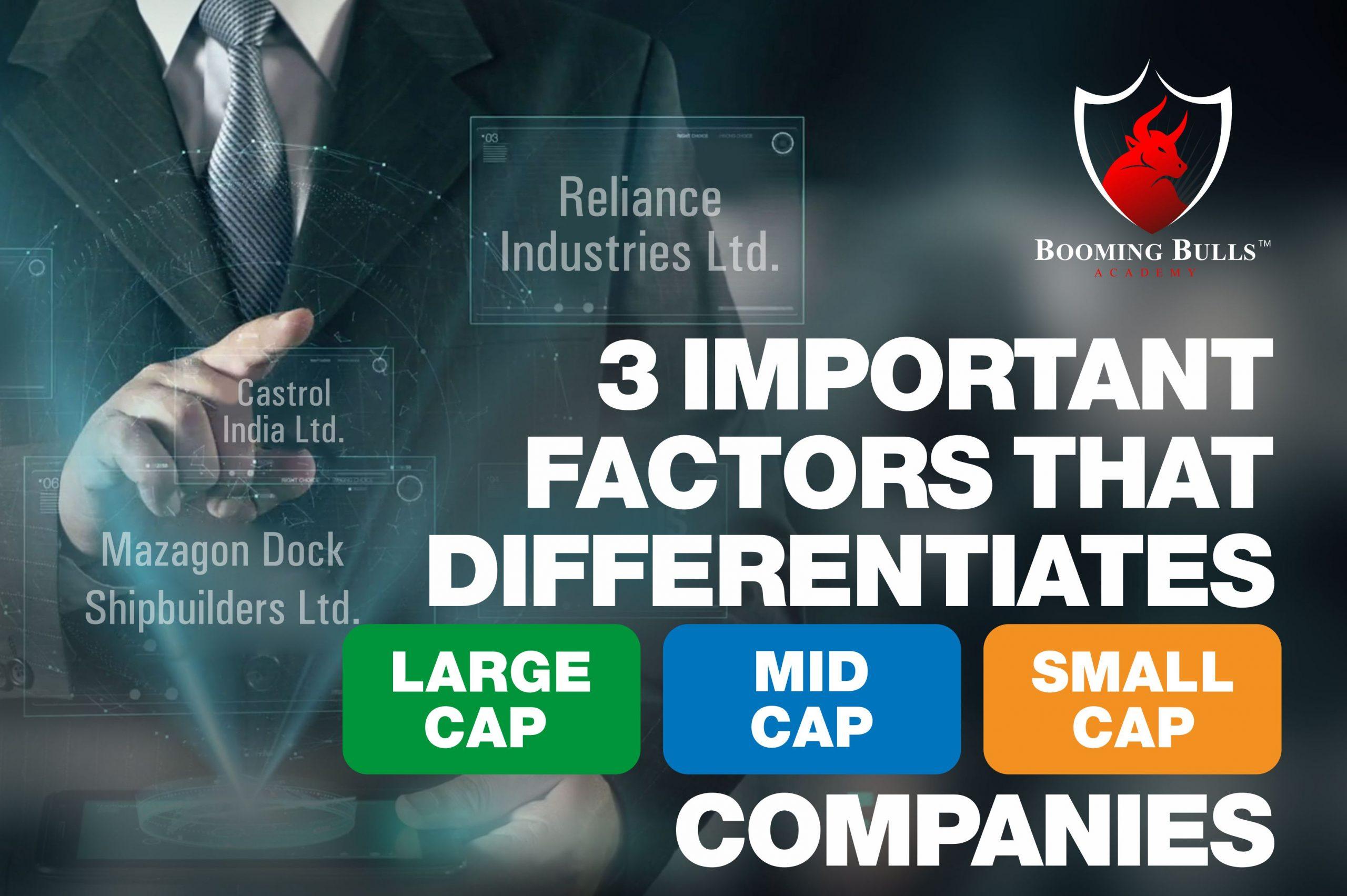 3 Important Factors That Differentiates Large Cap, Mid Cap, And Small Cap Companies